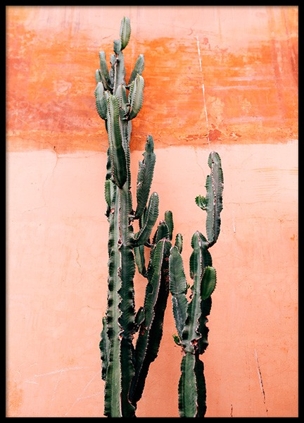 Orange Cactus Wall Poster in the group Posters & Prints / Botanical at Desenio AB (12220)