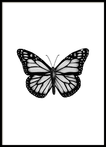 Butterfly Drawing Poster in the group Posters & Prints / Black & white at Desenio AB (12307)