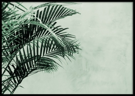 Palm Tree Wall Poster in the group Posters & Prints / Botanical at Desenio AB (12412)