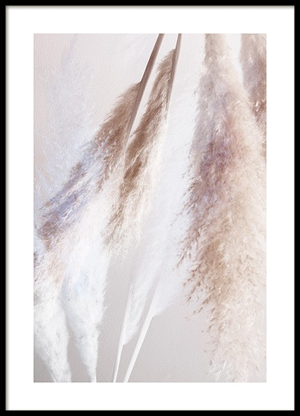 Abstract Reeds No2 Poster in the group Posters & Prints / Photography at Desenio AB (12422)