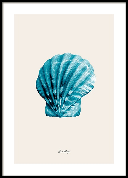 Blue Scallop Poster