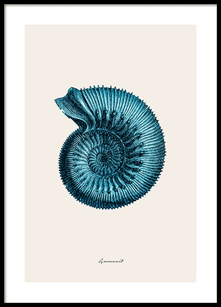 Blue Ammonit Poster in the group Posters & Prints / Sizes / 30x40cm | 12x16 at Desenio AB (12429)