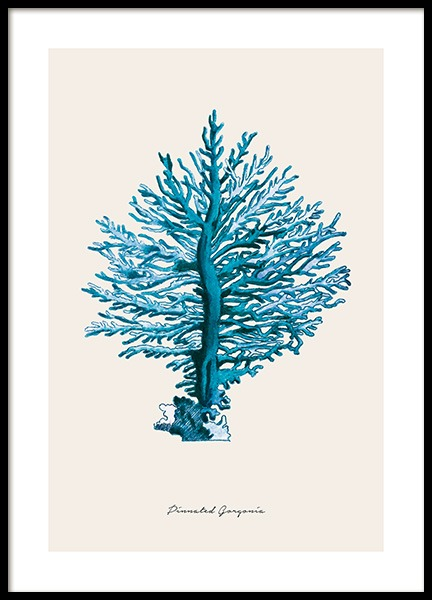 Blue Pinnated Gorgonia Poster in the group Posters & Prints / Nature at Desenio AB (12430)