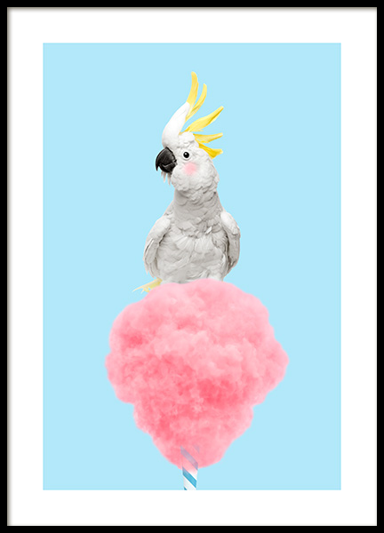 Cotton Candy Cockatoo Poster in the group Posters & Prints / Insects & animals / Birds at Desenio AB (12478)