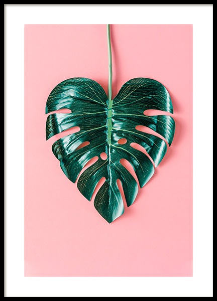 Heart-Shaped Monstera Poster in the group Posters & Prints / Sizes / 30x40cm | 12x16 at Desenio AB (12524)