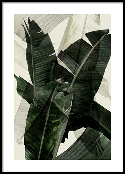 Banana Leaf Shades No2 Poster in the group Posters & Prints / Sizes / 50x70cm | 20x28 at Desenio AB (12586)