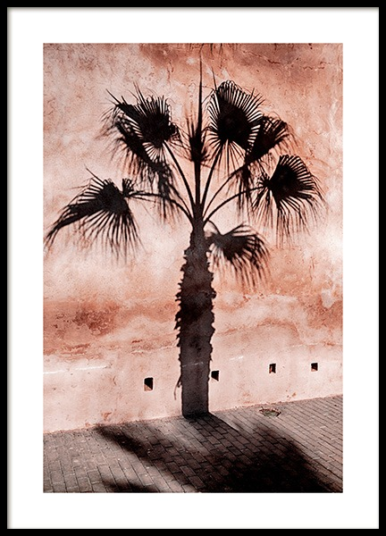 Palm Tree Shadow Poster in the group Posters & Prints / Nature at Desenio AB (12600)