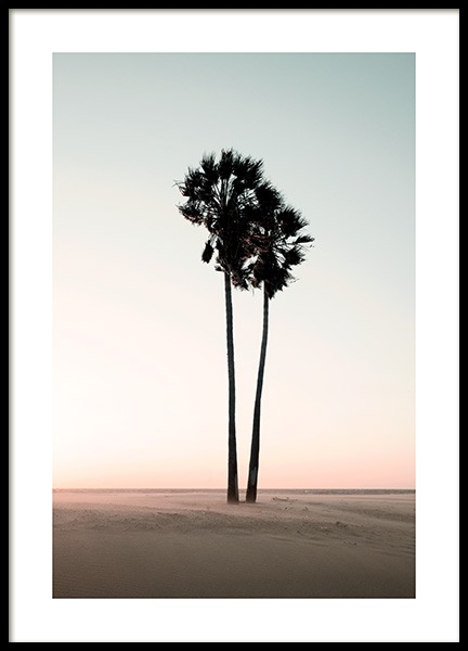 Coconut Palm Trees Poster in the group Posters & Prints / Nature at Desenio AB (12647)