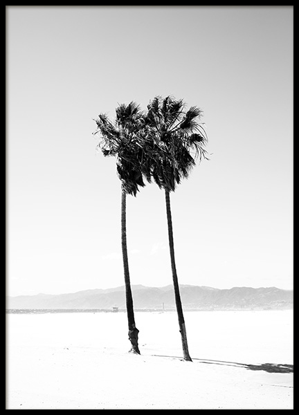 Palm Trees B&W Poster in the group Posters & Prints / Black & white at Desenio AB (12649)