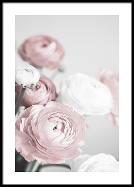 Lovely Roses Poster in the group Posters & Prints / Photography at Desenio AB (12654)