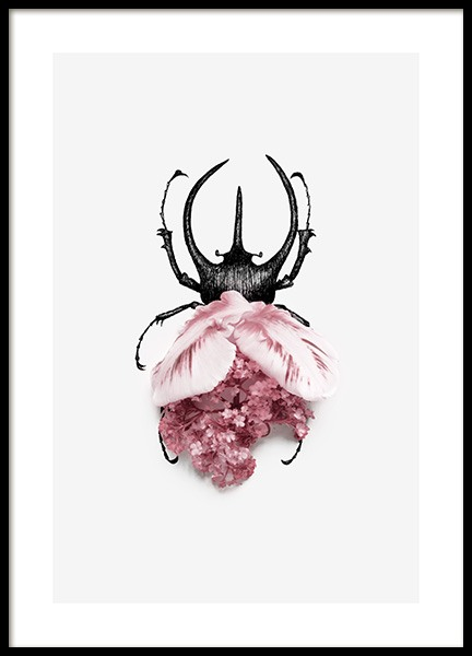 Flower Bug Poster in the group Posters & Prints / Insects & animals /  at Desenio AB (12720)