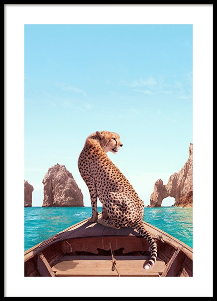Los Cabos Poster in the group Posters & Prints / Nature at Desenio AB (12738)