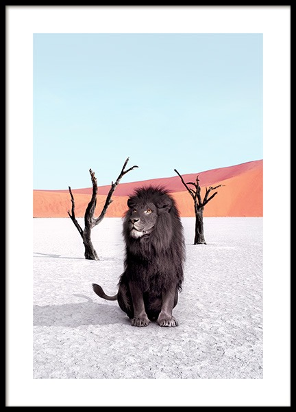 Namibia Poster in the group Posters & Prints / Photography at Desenio AB (12740)