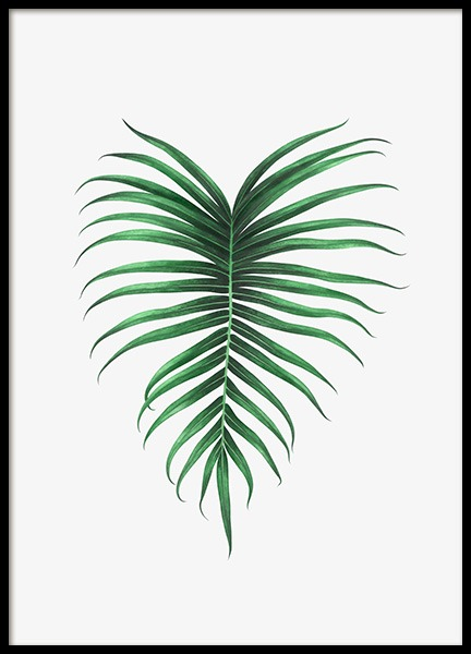 Tropical Leaf Poster in the group Posters & Prints / Botanical at Desenio AB (12832)