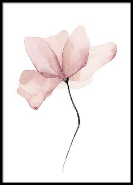 Aquarelle Flower Poster in the group Posters & Prints / Botanical at Desenio AB (12897)