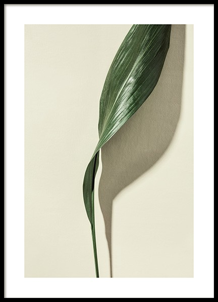 Leaf Poster in the group Posters & Prints / Photography at Desenio AB (12913)