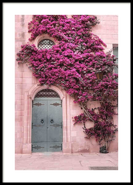 Pink Flower Wall Poster in the group Posters & Prints / Photography at Desenio AB (13005)