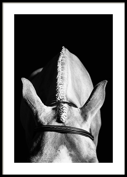 Horse Hairstyle Poster in the group Posters & Prints / Black & white at Desenio AB (13038)