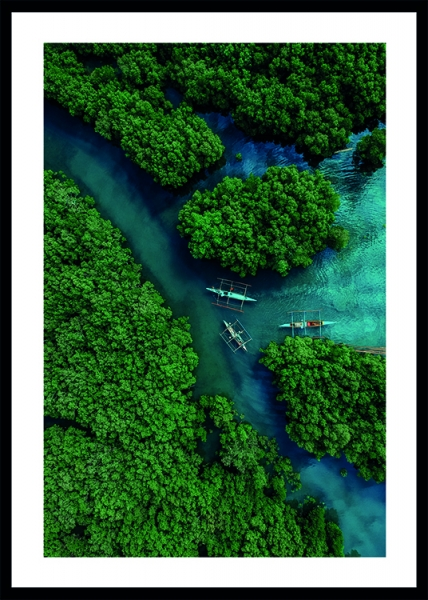 Aerial River View Poster in the group Posters & Prints / Nature / Tropical at Desenio AB (13068)