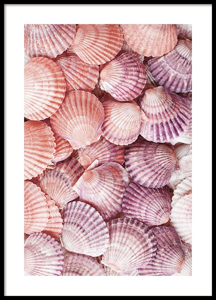 Purple Seashells Poster in the group Posters & Prints / Nature at Desenio AB (13089)