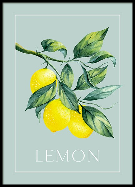 Vintage Lemons Poster in the group Posters & Prints / Kitchen at Desenio AB (13102)