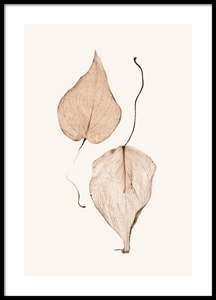 Two Dried Leaves Poster