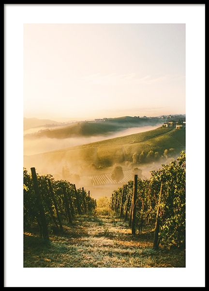 Langhe Vineyard Poster in the group  at Desenio AB (13394)