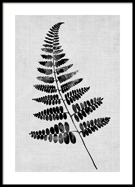 Monochrome Fern No2 Poster in the group  at Desenio AB (13476)