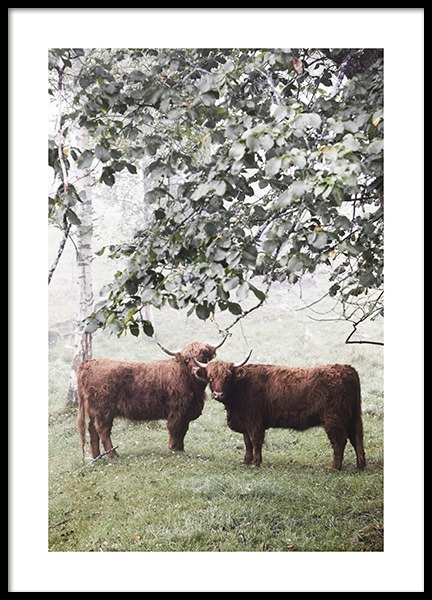 Cows Under Tree Poster in the group Posters & Prints / Insects & animals at Desenio AB (13514)