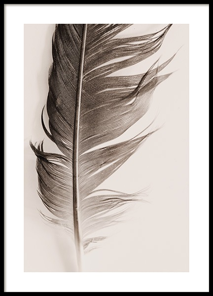 Feather Beige Poster in the group Posters & Prints / Nature at Desenio AB (13646)