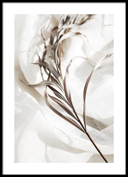 Delicate Palm Leaves No1 Poster in the group Posters & Prints / Botanical / Palms at Desenio AB (13649)