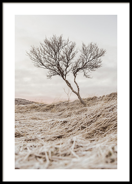 Bare Tree Poster in the group Posters & Prints / Nature at Desenio AB (13679)