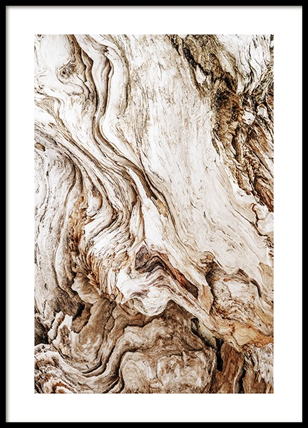 Driftwood Poster in the group Posters & Prints / Photography at Desenio AB (13831)