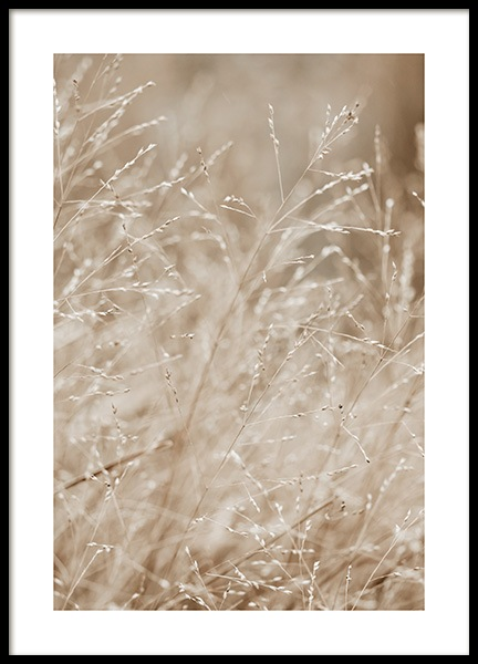 Beige Meadow Poster in the group Posters & Prints / Botanical / Green plants at Desenio AB (13956)