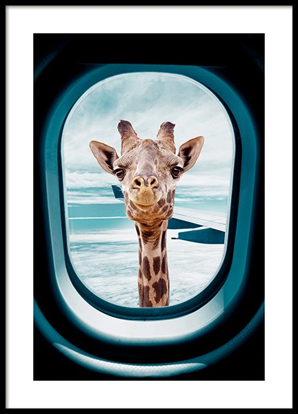Peek-A-Boo Giraffe Poster in the group Posters & Prints / Insects & animals / Wild animals / Giraffes at Desenio AB (14161)