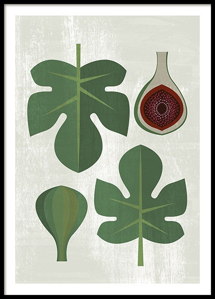 Fig Fruit Kitchen Poster in the group Posters & Prints / Kitchen / Fruit & Vegetables at Desenio AB (14190)