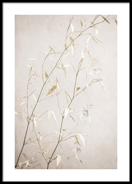 Beige Straws Poster in the group Posters & Prints / Botanical / Green plants at Desenio AB (14208)