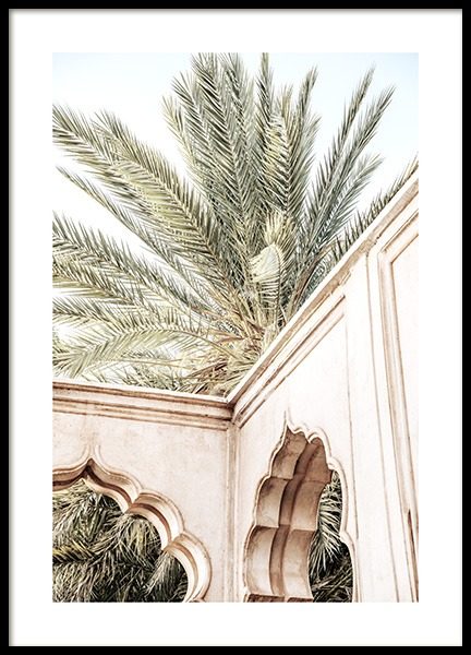 Palm Curves Poster