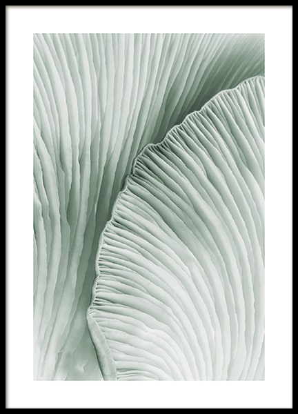 Lamella Poster in the group Posters & Prints / Botanical at Desenio AB (14250)