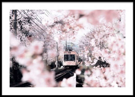 Blossom in Kyoto Poster in the group Posters & Prints / Botanical / Flowers at Desenio AB (14411)