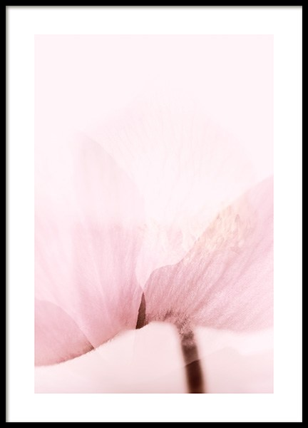 Translucent Flower Poster in the group Posters & Prints / Botanical / Flowers at Desenio AB (14415)