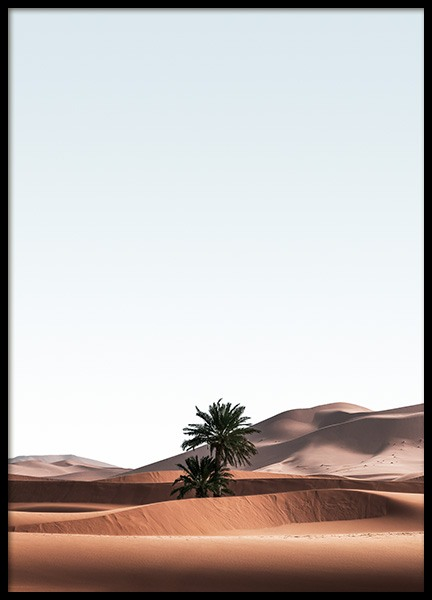 Merzouga Desert Poster in the group Posters & Prints / Nature / Deserts at Desenio AB (14444)