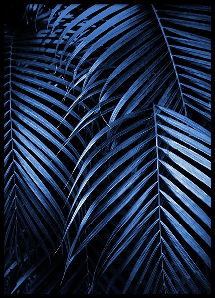 Blue Palm Leaves No2 Poster in the group Posters & Prints / Botanical / Palms at Desenio AB (14562)