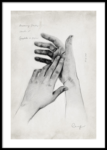 Anatomy Study Hands No1 Poster in the group Posters & Prints / Art prints at Desenio AB (14689)