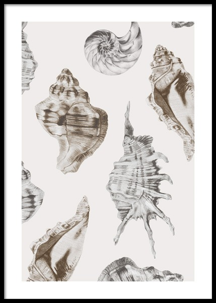 Shell Pattern Poster in the group Posters & Prints / Art prints at Desenio AB (14707)