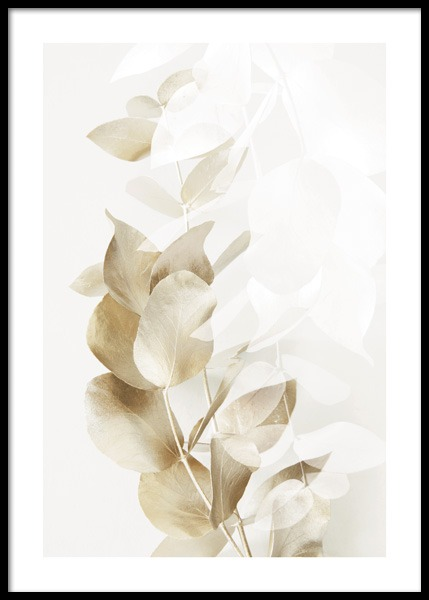 Golden Eucalyptus No2 Poster in the group Posters & Prints / Botanical / Green plants at Desenio AB (14722)
