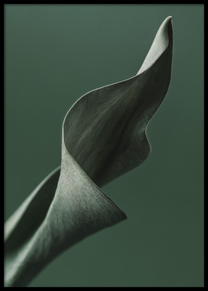 Green Tulip Leaf Poster in the group Posters & Prints / Botanical / Green plants at Desenio AB (14725)