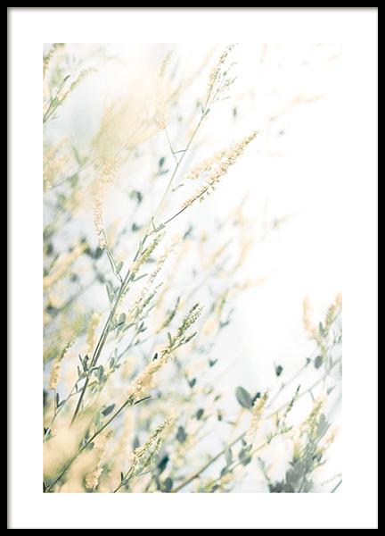 Light Floral Poster