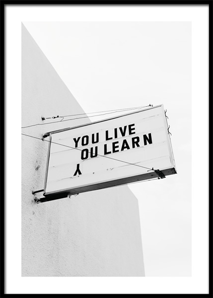 You Live You Learn Poster