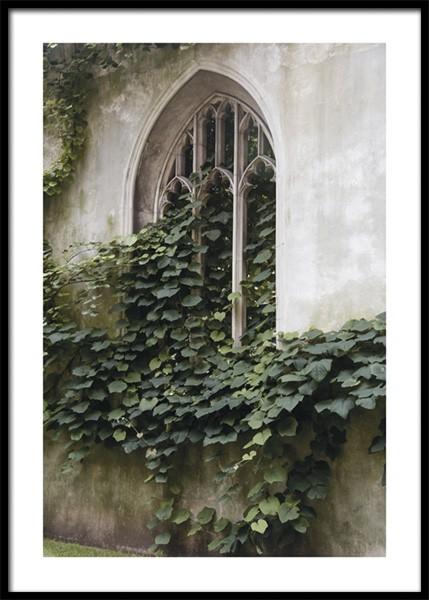 Lush Window Poster